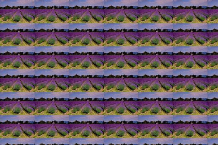 Vinylová Tapeta Lavender Valley - Témata