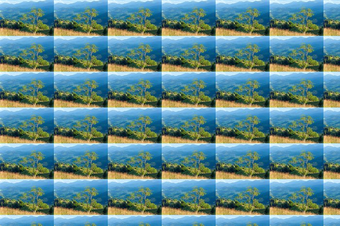 Vinylová Tapeta Letní horské krajiny - Roční období