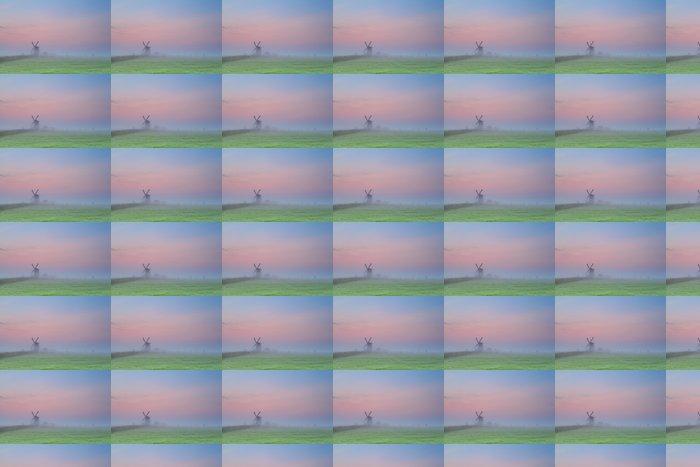 Vinylová Tapeta Větrný mlýn silueta na slunce oblohu - Roční období