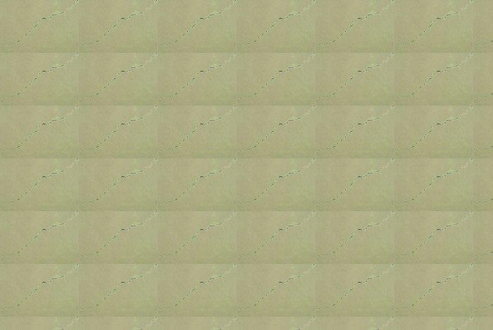 Vinylová Tapeta Textura - popraskané chodník - Památky