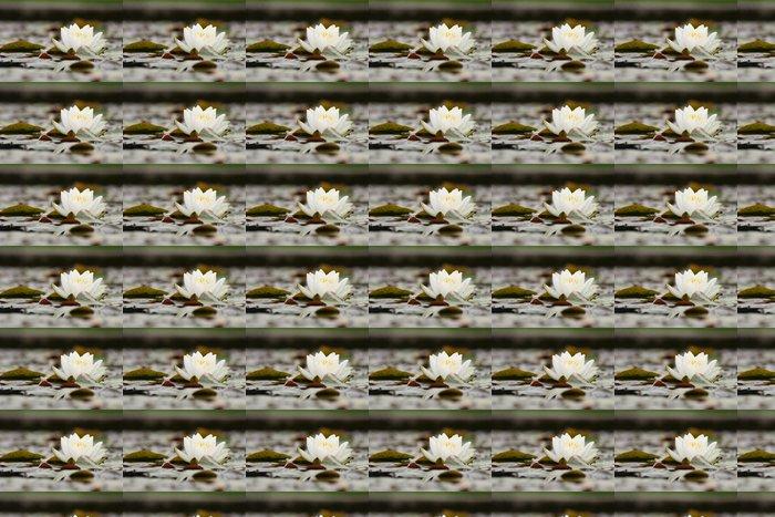 Vinylová Tapeta Nenuphar - Květiny