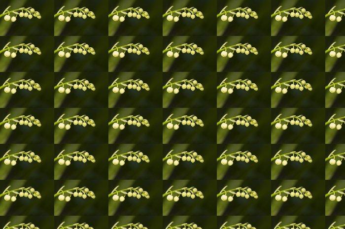Vinylová Tapeta Convallaria majalis - Rostliny