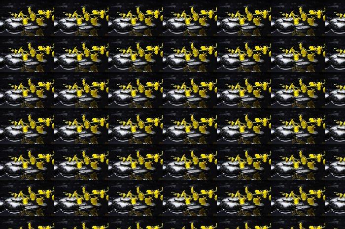 Vinylová Tapeta Terapie kameny s žlutým orchidej na kamínek - Květiny
