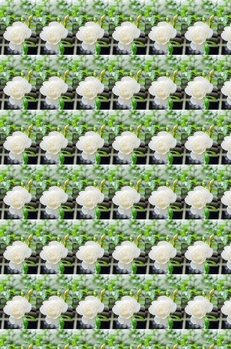 Vinylová Tapeta Bílé růže květiny v zahradě - Květiny