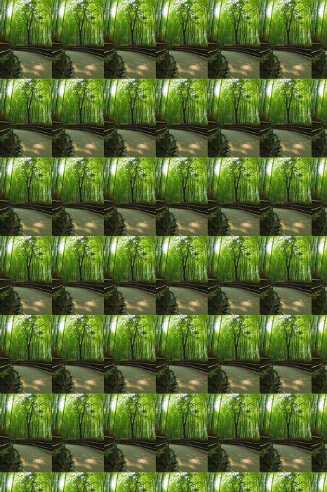 Vinylová Tapeta Bambusový háj - Rostliny
