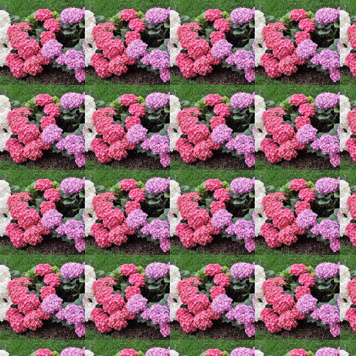 Vinylová Tapeta Hortensia květ - Jiné objekty
