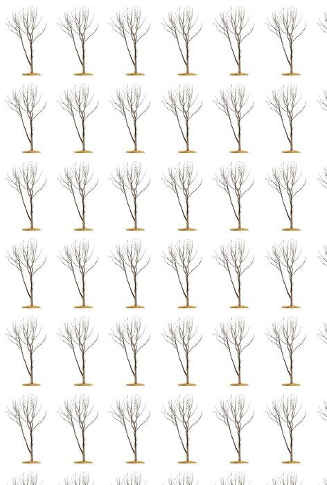 Vinylová Tapeta Strom na bílém pozadí - Roční období