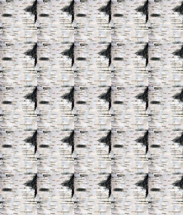 Vinylová Tapeta Březová kůra textury pozadí Makro - Ekologie