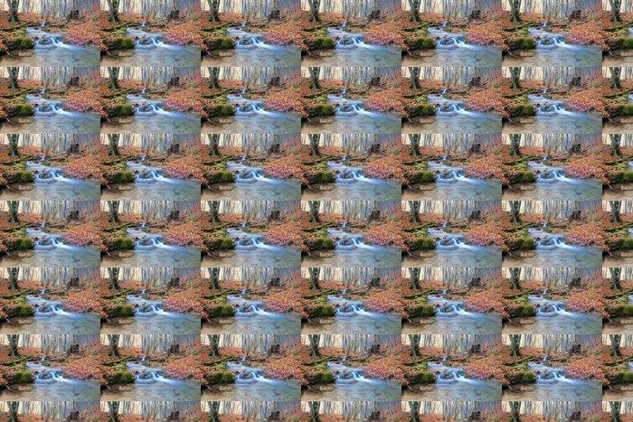 Vinylová Tapeta Horská řeka v lese na podzim - Voda