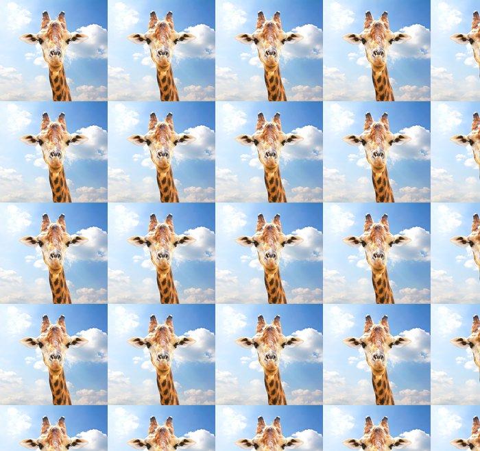 Vinylová Tapeta Detailním portrét žirafa na modrém pozadí oblohy. - Témata