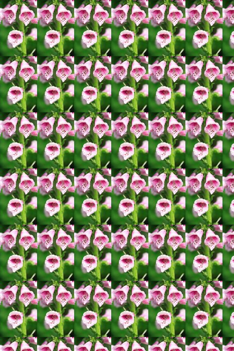 Vinylová Tapeta Hollyhock - Květiny