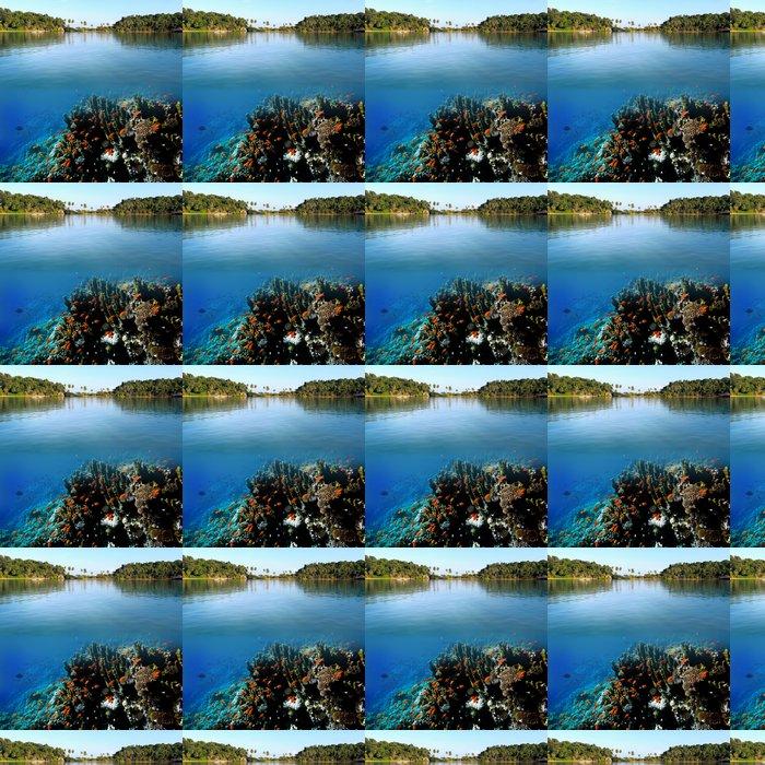 Vinylová Tapeta Foto korálové kolonie - Osud