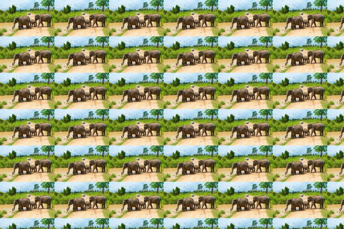 Vinylová Tapeta Skupina divokých slonů - Témata