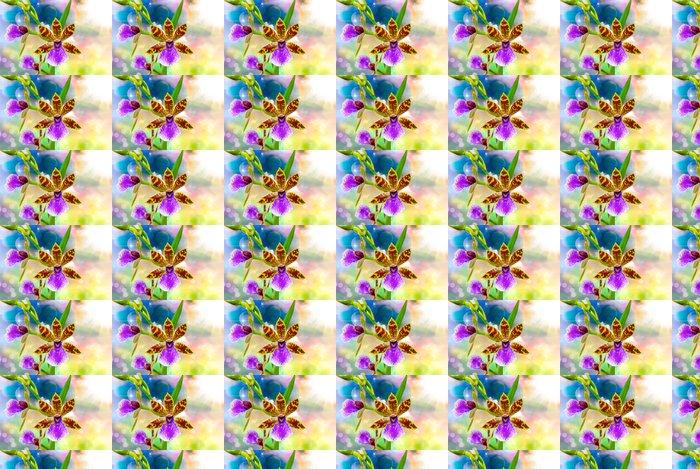 Vinylová Tapeta Orchid Flower Close Up - Květiny
