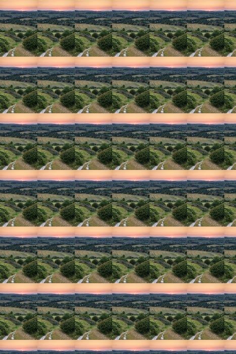 Vinylová Tapeta Landscape Letní západ slunce pohled na anglickém venkově - Nebe