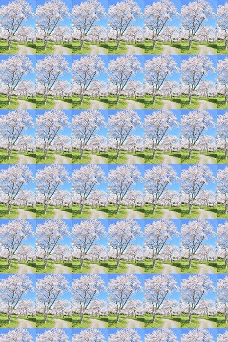 Vinylová Tapeta Třešňové květy v plném květu - Prázdniny