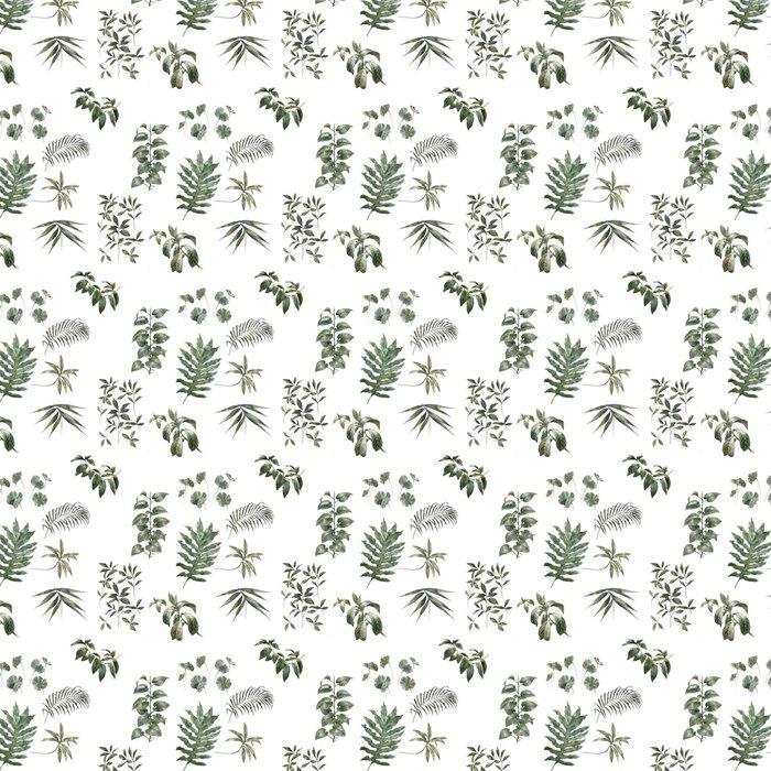Vinylová Tapeta Akvarel ilustrace list, bezešvé vzor na bílém pozadí - Grafika
