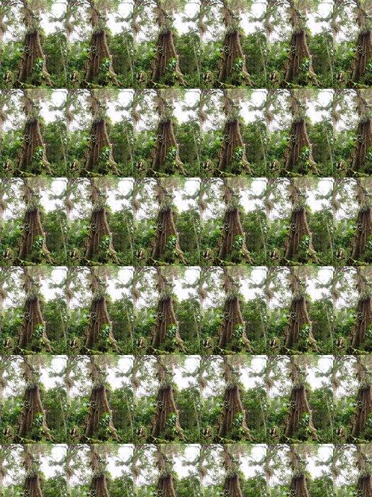 Vinylová Tapeta Gran árbol - Stromy