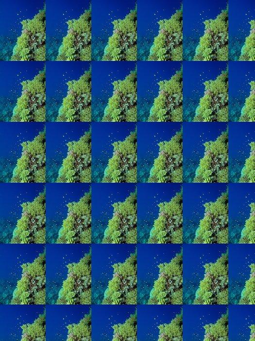 Vinylová Tapeta Korálový útes scény - Květiny