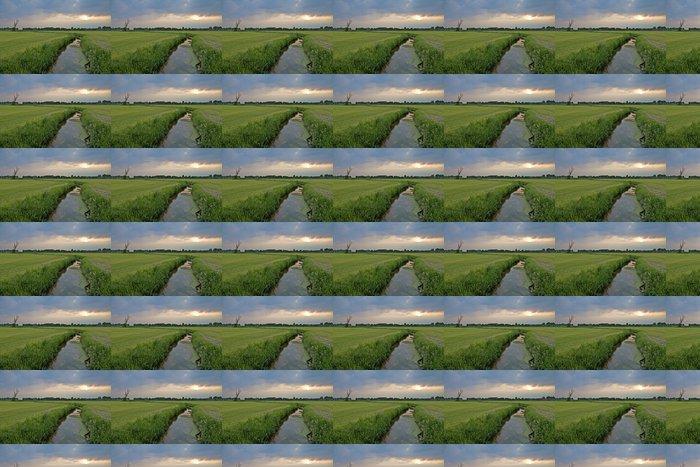 Oja hollantilaisessa maisemassa pilvinen iltapäivällä Vinyylitapetti - Maaseutu