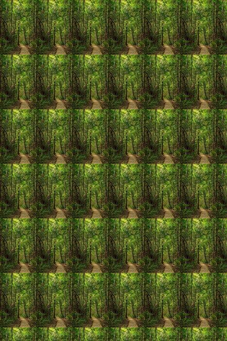 Vinylová Tapeta Krásná stezka v džungli ostrova Tarutao - Prázdniny