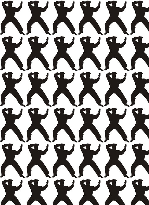 Vinylová Tapeta Bojové umění - Individuální sporty