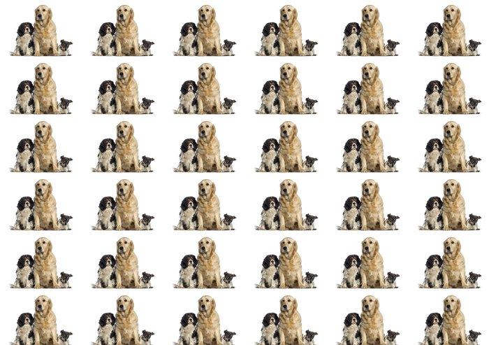 Vinylová Tapeta Skupina psů seděli pohromadě -