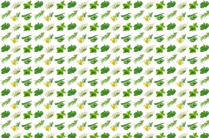 Vinylová Tapeta Medicinal herbs - Rostliny