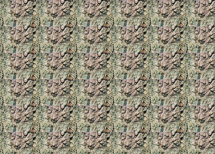 Vinylová Tapeta Starý strom kůra textury. Skenovaných Film Zdroj - Přírodní krásy