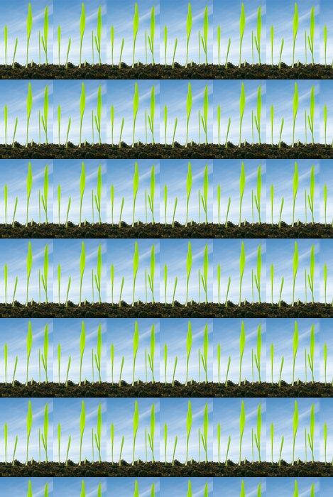 Vinylová Tapeta Rostliny proti obloze - Roční období