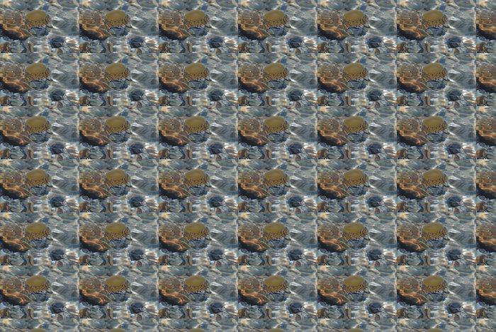 Papier Peint à Motifs Vinyle Medusa - Animaux marins