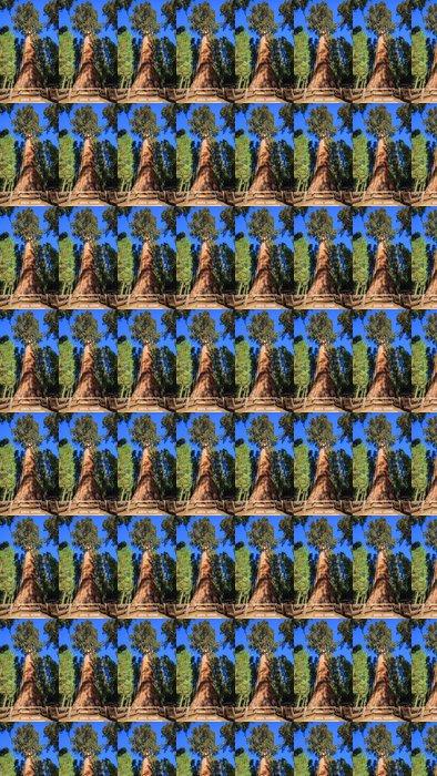 Vinylová Tapeta General Sherman Tree - Stromy
