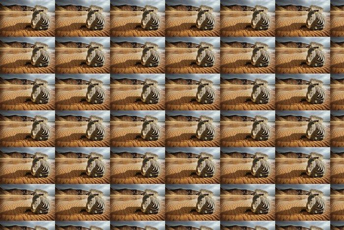 Vinylová Tapeta Beach Zebra - Témata
