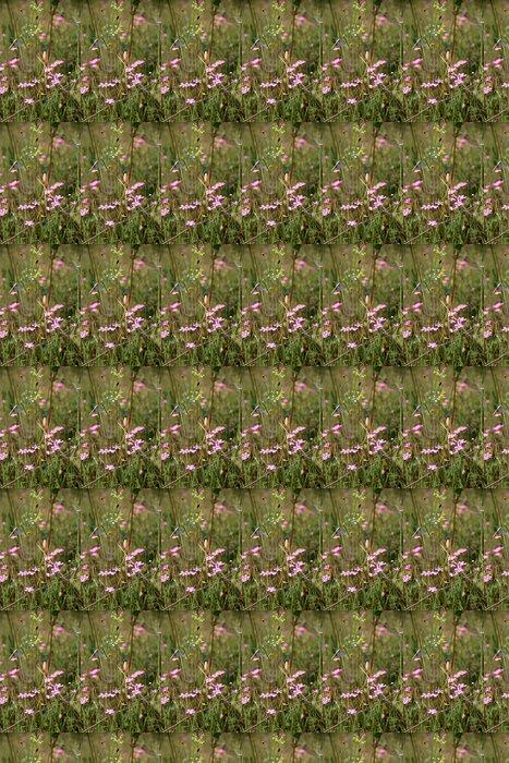 Маленькие фиолетовые цветочки в поле Vinyylitapetti - Kukat