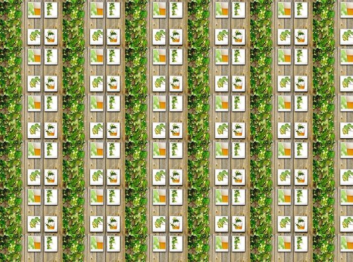 Vinylová Tapeta Starý dřevěný plot a popínavá rostlina chmele - Alkohol