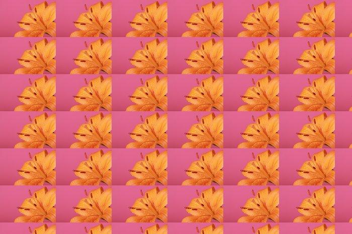 Vinylová Tapeta Orange flower - Květiny