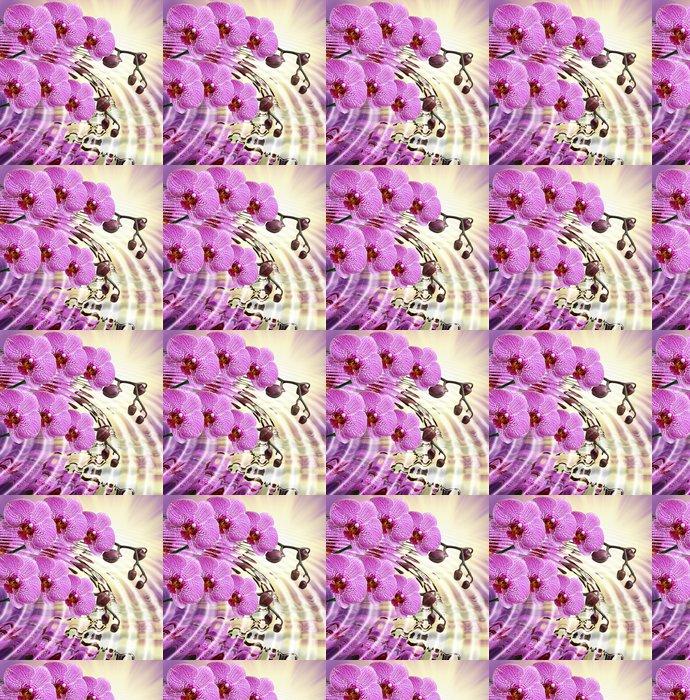 Tapeta winylowa Zbliżenie kwiat orchidei - Tematy
