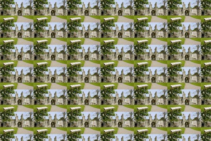 Vinylová Tapeta Opatství Jumieges, Normandie, France - Evropa