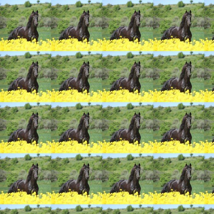 Vinylová Tapeta Amazing fríský kůň běží v poli řepky - Témata