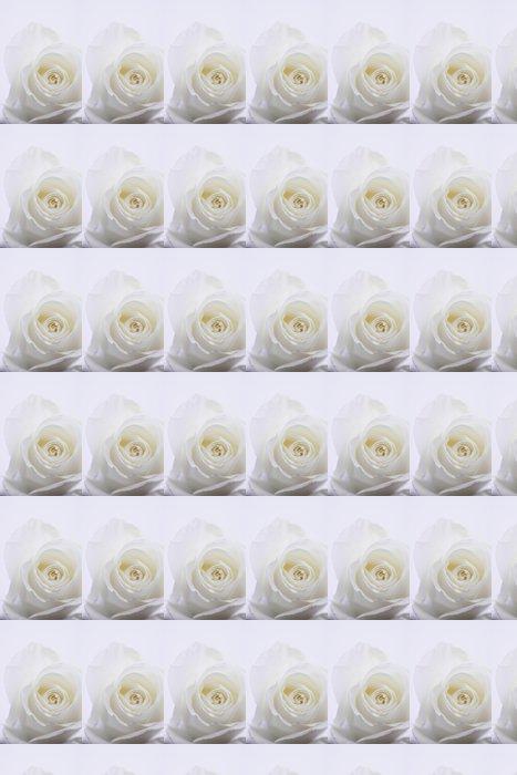 Vinyltapete Weiße Rose - Themen