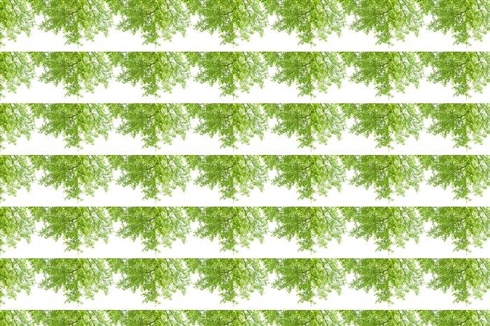 Vinylová Tapeta New Green - Stromy