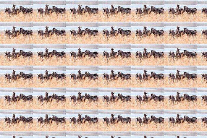 Vinylová Tapeta Malé stádo divokých Burchells Zebra pastvě u jezera - Témata