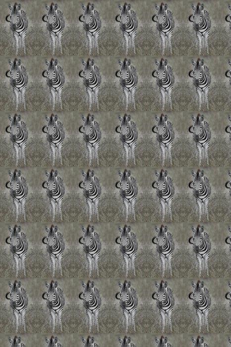 Vinylová Tapeta Dětská zebra - Témata