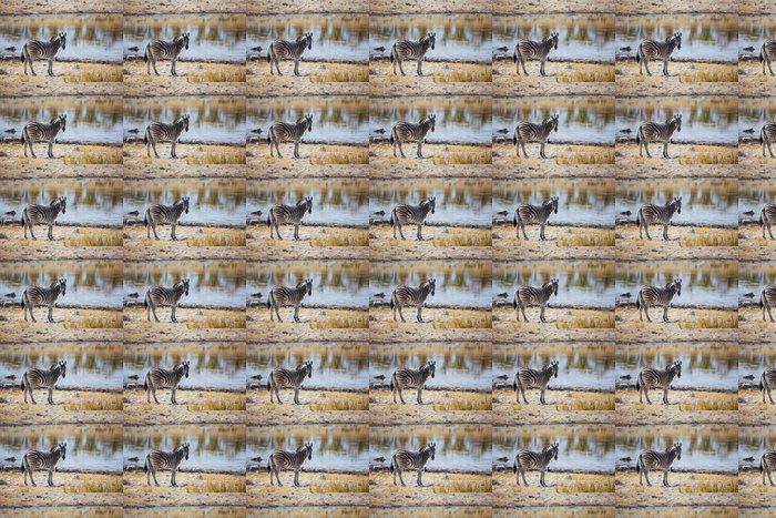 Behang Kinderkamer Zebra : Behang zebra bij lake u2022 pixers® we leven om te veranderen