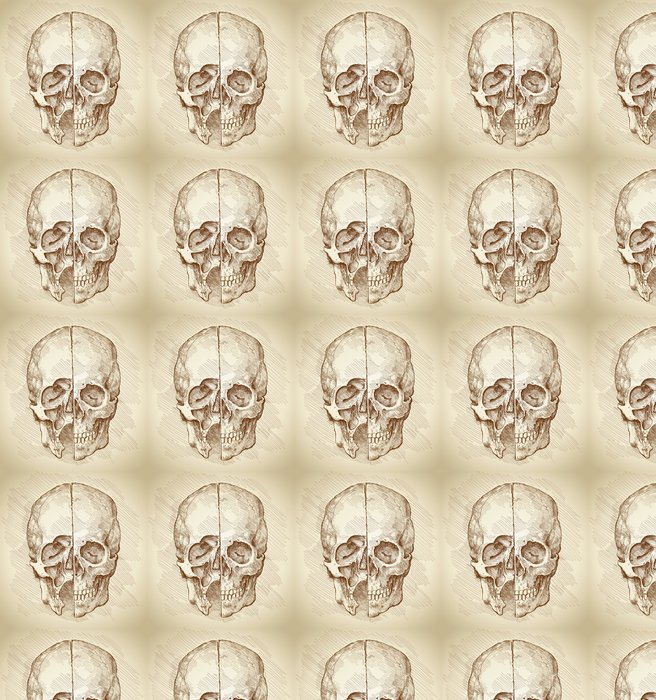 Vinylová Tapeta Lebka. Oddíl. Na kreslení Leonardo da Vinci na základě - Zdraví a medicína