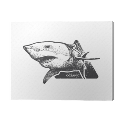 Beautiful Hand Drawn Shark With Open Mouth Monochrome Illustration Retro Style It Can Be Used For Printing On T Shirts Posters Or Used As Ideas For Tattoos Canvas Print Pixers We