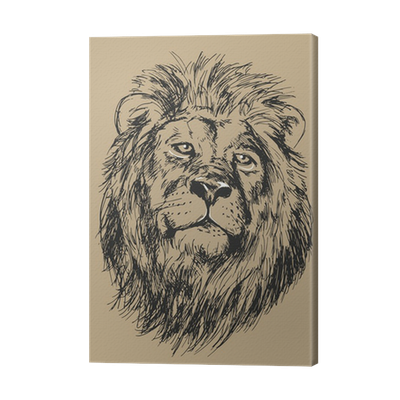 Drawing Lion S Head Vector Illustration Canvas Print Pixers We Live To Change