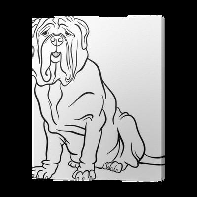 Neapolitan Mastiff Dog Cartoon For Coloring Canvas Print Pixers We Live To Change