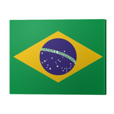 official national flag of Brazil Canvas Print • Pixers ...