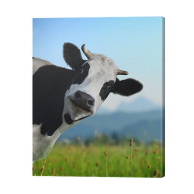 Cuadro en lienzo vaca pixers vivimos para cambiar - Cuadros de vacas ...